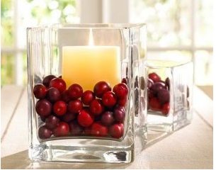 cranberry centerpiece - Diy Christmas Centerpieces