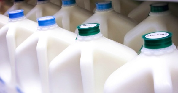 milk coupons