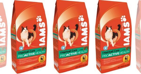 Iams Cat Dry Food At Bjs