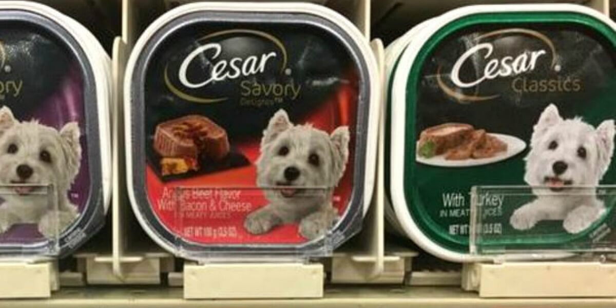 graphic about Caesars Dog Food Printable Coupons named 3 No cost Cesar Pet Foods and Cesar Easily Developed Supplement at
