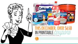 monthly-savings-decemberfacebook
