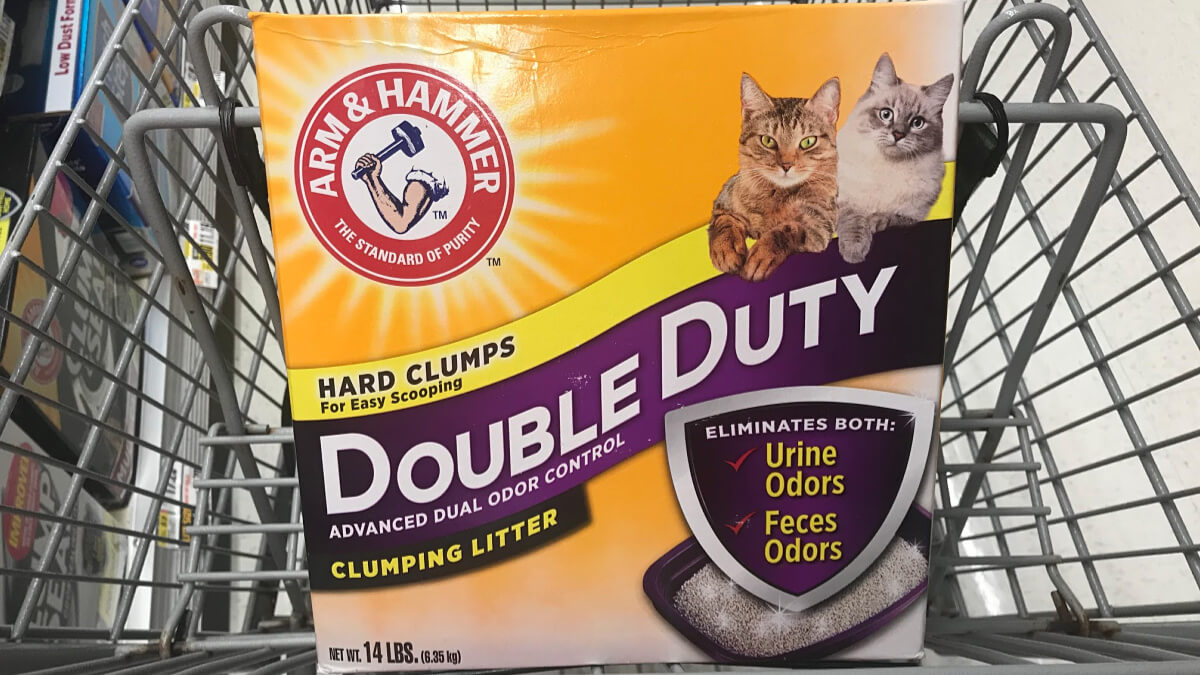 graphic relating to Cat Litter Coupons Printable identify Clean $2/1 Arm Hammer or Feline Pine Cat Clutter Coupon