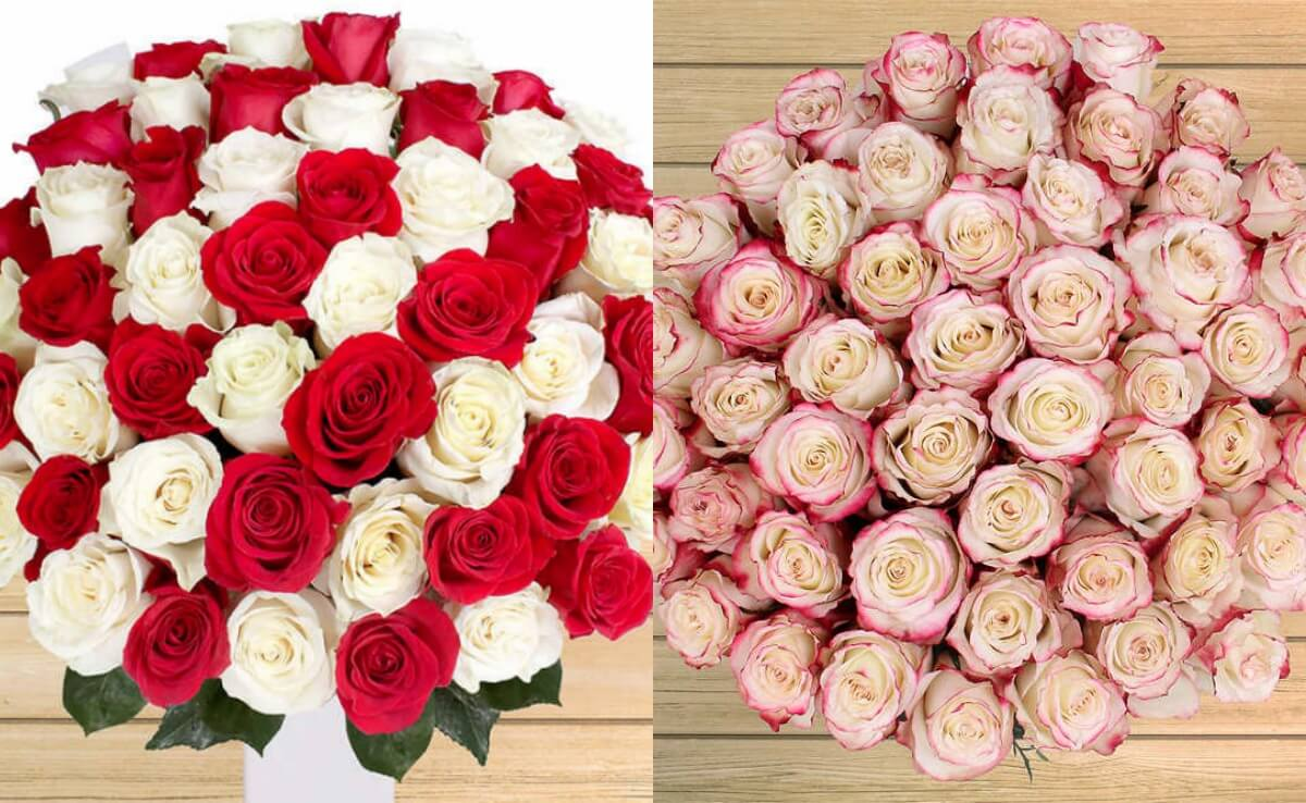 Roses in a Box Delivered