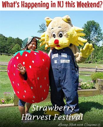 6-7-14 strawberry festival