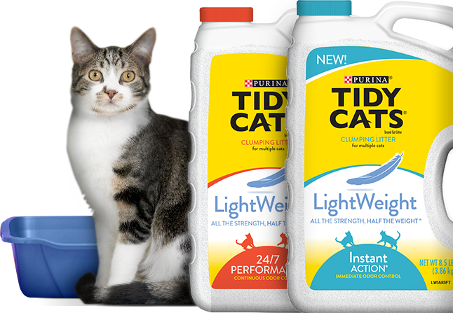 picture relating to Tidy Cat Printable 3.00 Coupon known as Tidy Cats Coupon - $3/1 Tidy Cats Light-weight Cat Muddle